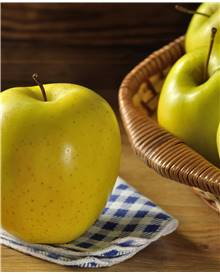 Pommier 'Golden Delicious'
