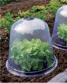 3 cloches de forçage