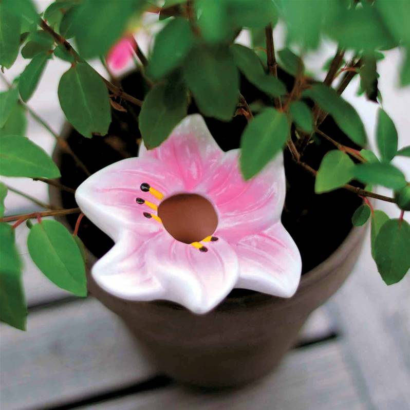 3 humidificateurs fleurs willemse for Willemse fleurs