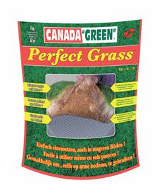 Gazon Perfect grass