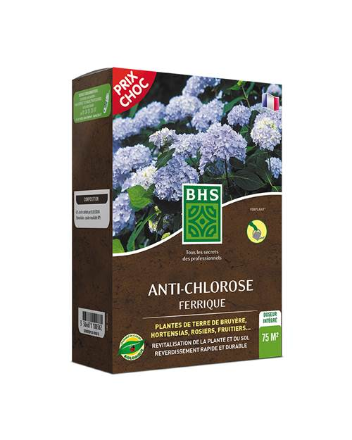 anti chlorose ferrique 150g bhs utilisable en agriculture biologique willemse. Black Bedroom Furniture Sets. Home Design Ideas
