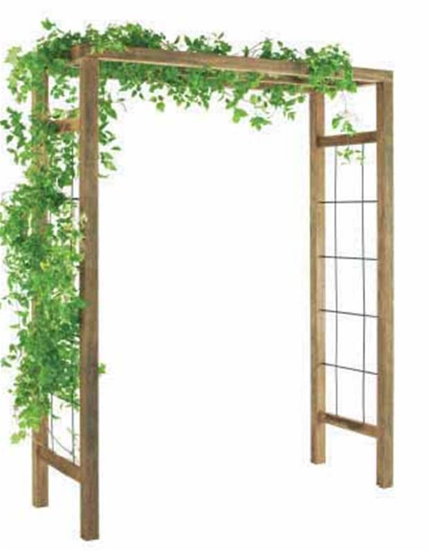 pergola bois ikebana willemse. Black Bedroom Furniture Sets. Home Design Ideas
