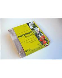 Pack mahonia sur tige + pot + terreau