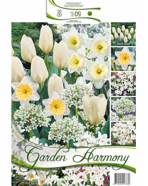 Collection 50 bulbes 'Garden Harmony' blanche