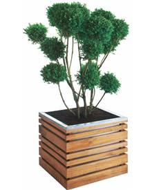 pots en bois pour plantes et arbustes achat vente en ligne willemse jardin. Black Bedroom Furniture Sets. Home Design Ideas