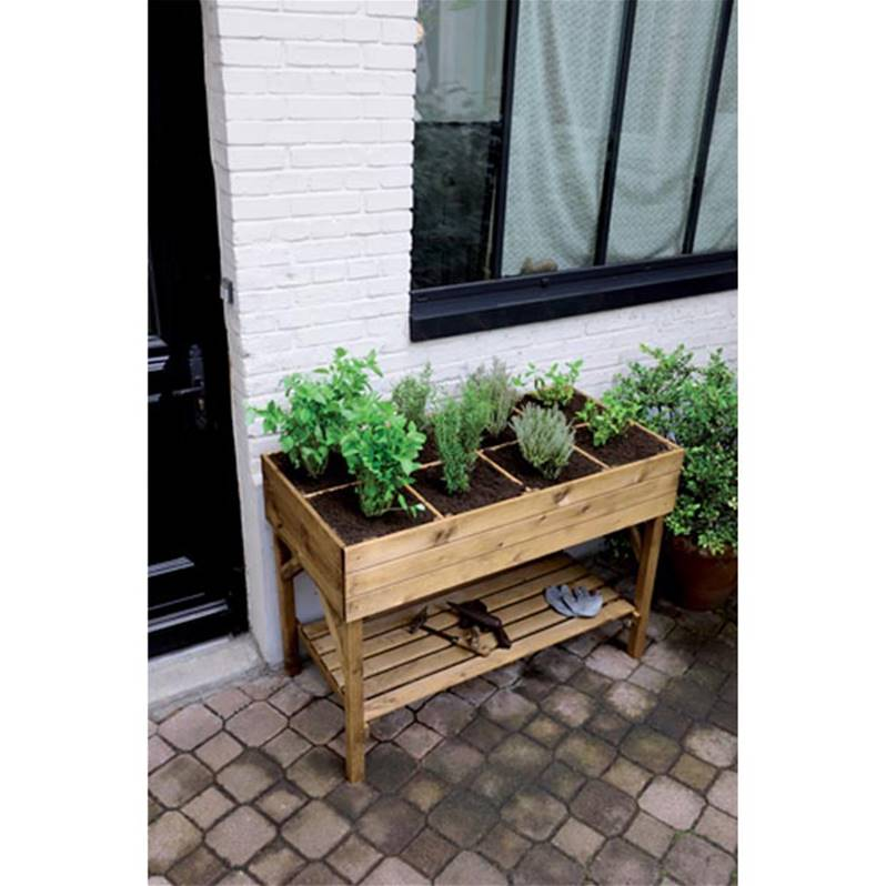 carr potager gariguette willemse