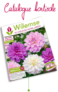 catalogue horticole Willemse