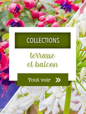 Collections terrasse et balcon